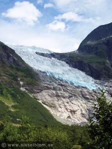 Bøyabreen - Glaciär, Fjærland i Sogndal