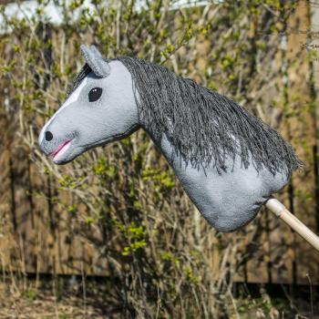 Min 1:a käpphäst - Hopi Våren 2019.